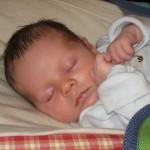 Oscar sleeping peacefully