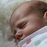 Cutie Jonty takes a nap